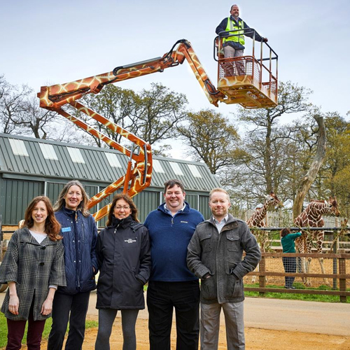 PRESS RELEASE: Unique Giraffe Boom Lift Gets New Home at ZSL Zoo